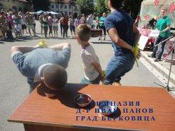 """Фестивал на ягодата"" (по проект УСПЕХ)"